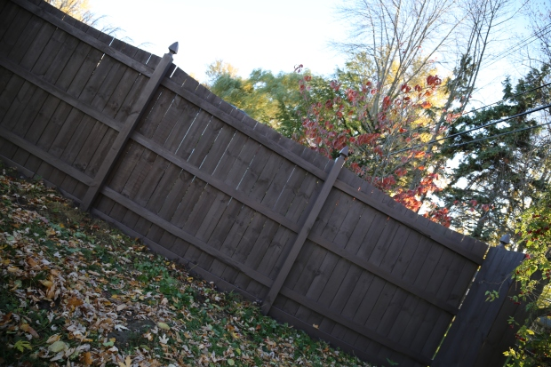 fence-painting-wagner-tools-1-109