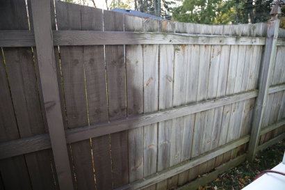 fence-painting-wagner-tools-1-49
