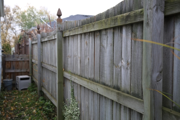fence-painting-wagner-tools-1-5