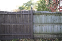 fence-painting-wagner-tools-1-71