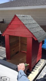 dog-house-haus2home